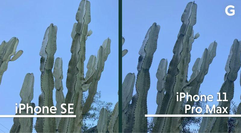 iPhone SEカメラ iPhone 11 Pro Maxと比較したら